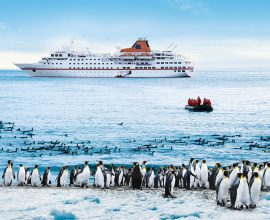 Expeditie cruise met Hapag Lloyd MS HANSEATIC